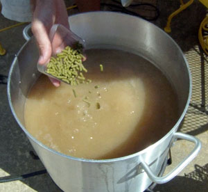 American hops are featured at the end of the boil.